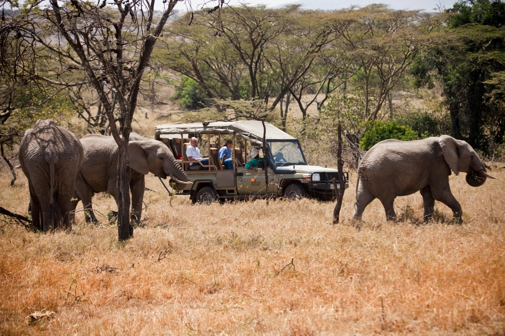 Game drive at naibosho conservancy.cru.small