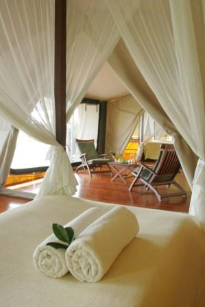 Luxury, Africa luxury safari, Masai Mara, lifestyle - Luxury