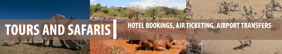 Nairobi, Nairobi National Park Tour, Elephant Tour, Giraffe, Airport Transfers, Attractions in Nairobi  - Travel